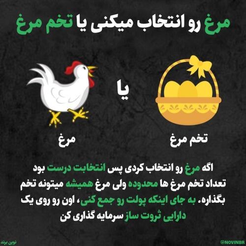مرغ رو انتخاب میکنی یا تخم مرغ