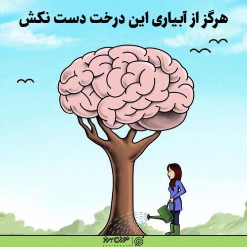 مغزت رو پیشرفت بده