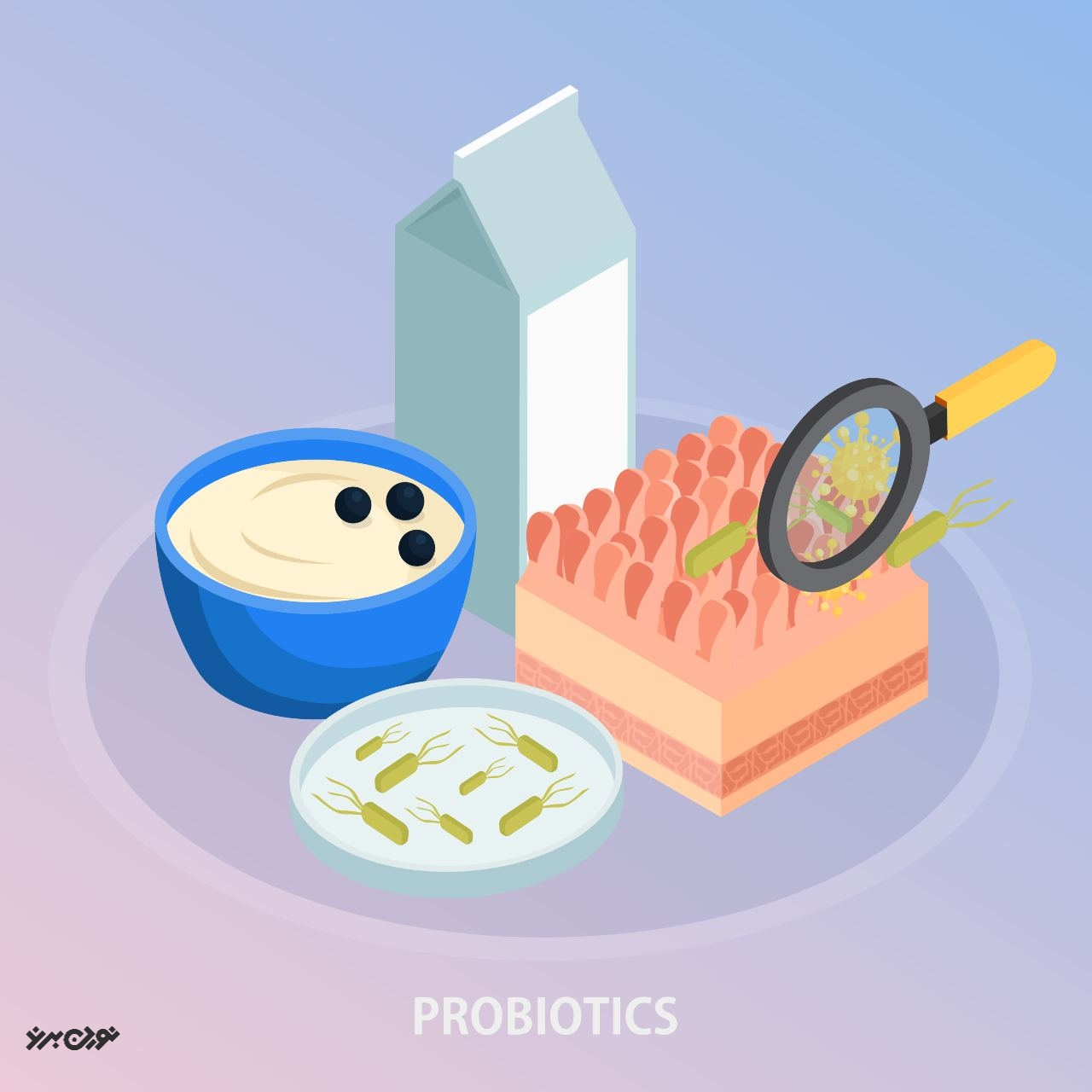 پروبیوتیکها