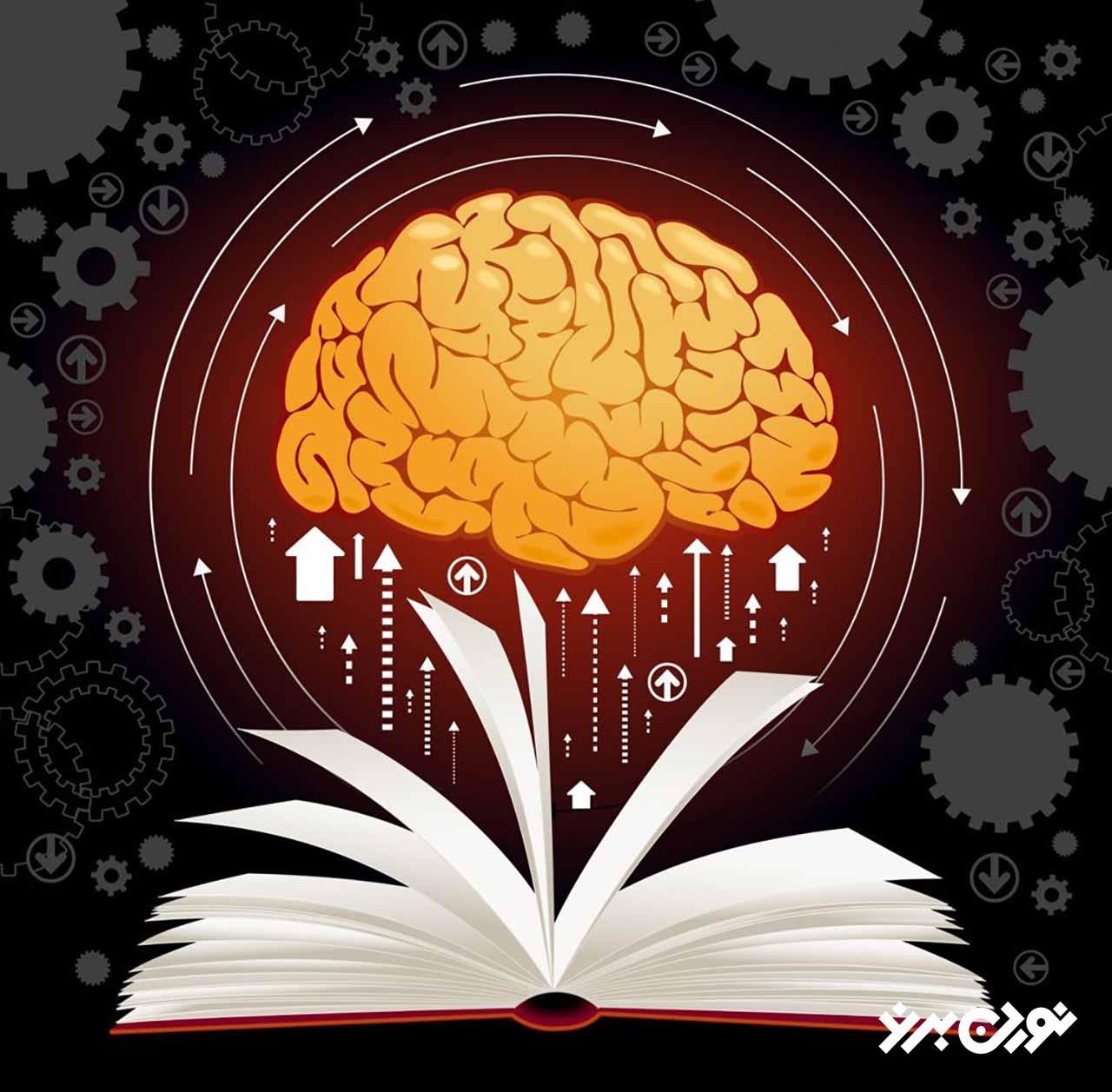 مکملهای مغز