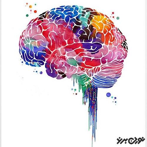 5 قدم برای داشتن مغز خلاقانهتر