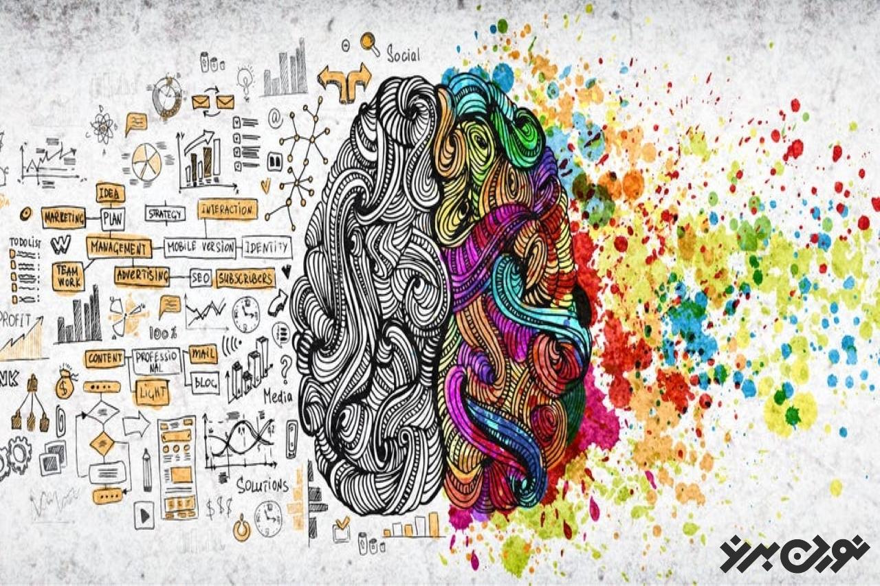 خلاقیت و مشارکت احساس زنده بودن و ارزشمندی میدهد.